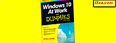 Windows 10 på jobb for dummies - hvorfor du bør lese det